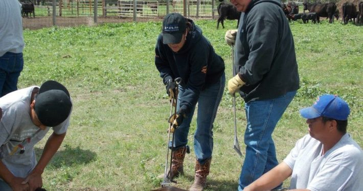 Vicki Hebb at work on her ranch.